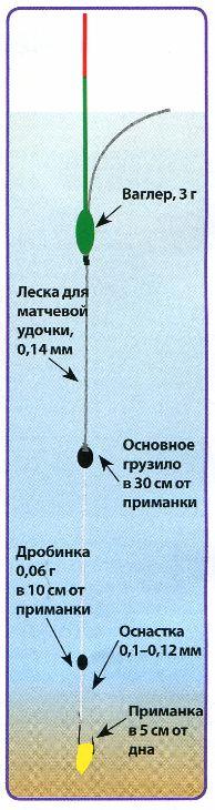 длина поводка при ловле плотвы